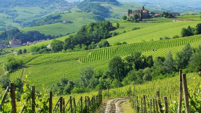 Für ihre guten Weine bekannt: Region um Barolo mit Castello di La Volta