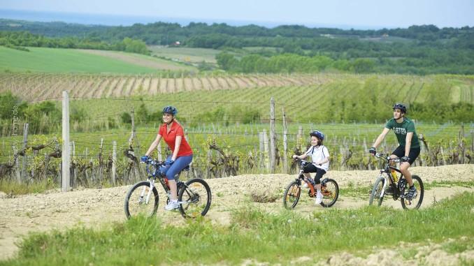 Mit dem Rad durch Istrien: für jedes Alter ist etwas dabei